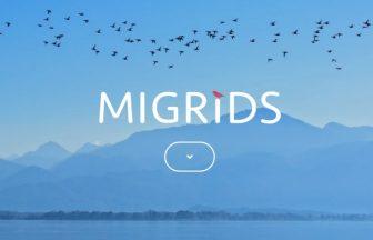ミグリッド